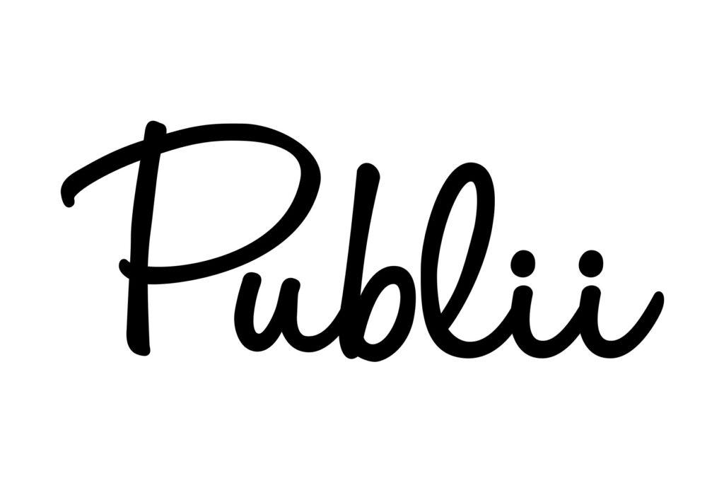 Publii- Top 10 Free Website Builder Softwares You Should Know