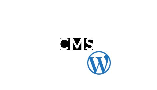 Job-Portal-CMS-Graphic