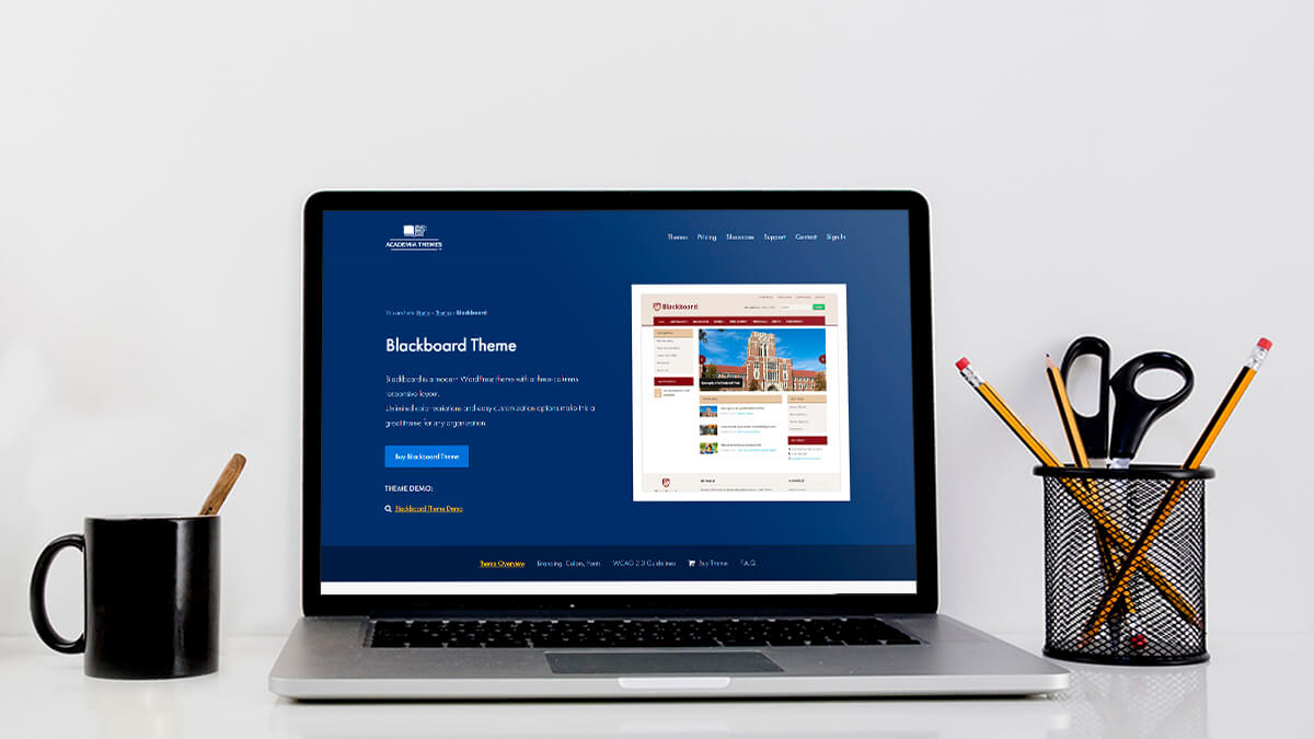 Blackboard- How Can I Find A WordPress Theme For My Education Website?
