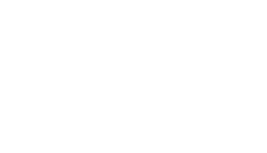 Get-Your-Website-With-WP-Graphic