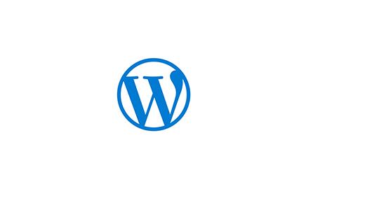 Main-WP-Seo-Graphic