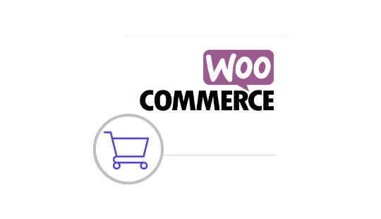 Why-Should-You-Woocommerce-graphic
