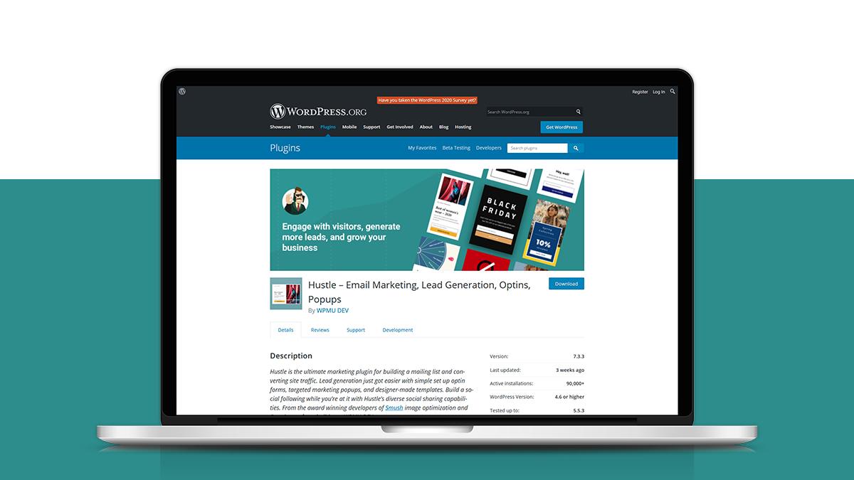 Hustle- 14 Most Suitable WordPress Plugins For Digital Business Websites