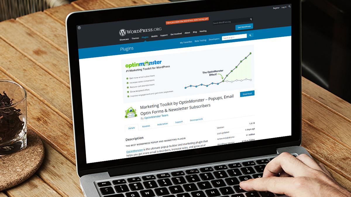 Optinmonster- 14 Most Suitable WordPress Plugins For Digital Business Websites
